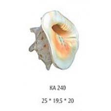 240KA Грот